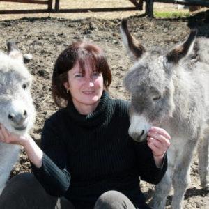 balade à dos d'âne ferme ânes