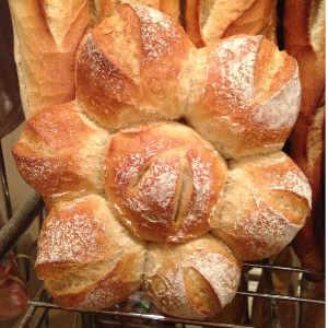 boulangerie-lieval-la-motte-du-caire