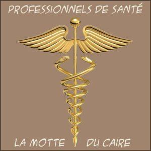professionnels de santé la motte du caire