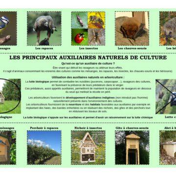 Panneau-13-sur-les-principaux-auxiliaires-naturels-de-culture