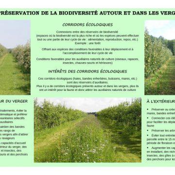 Panneau-15-sur-la-préservation-de-la-biodiversité