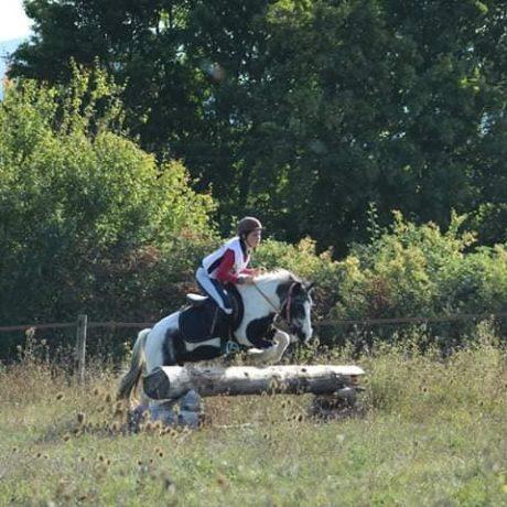 ecuries-sandalphon-clamensane-equitation-1
