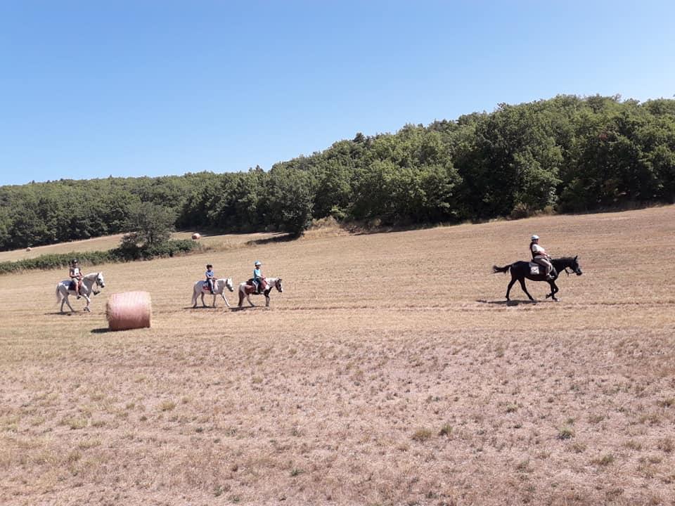 ecuries-sandalphon-clamensane-equitation-balade-chevaux1
