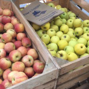 arboriculture curbans pommes et poires locales