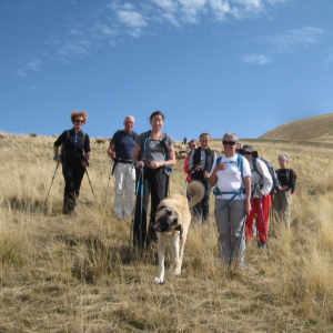 randonnées pédestres hautes terres de provence